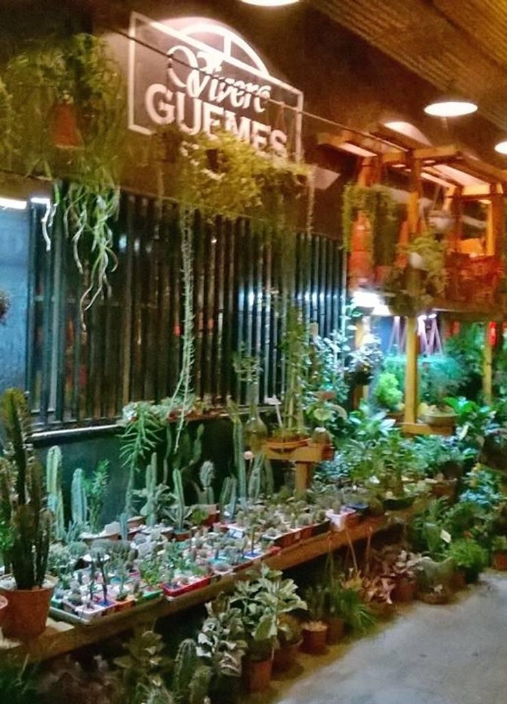 Espacios comerciales de estilo  de vivero guemes, Moderno