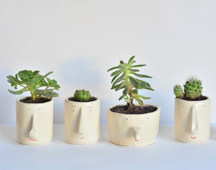 Pompilio Plants의  정원