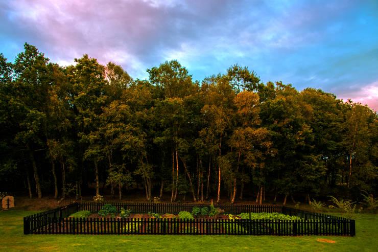 Jardines de estilo moderno por Belén Sueiro