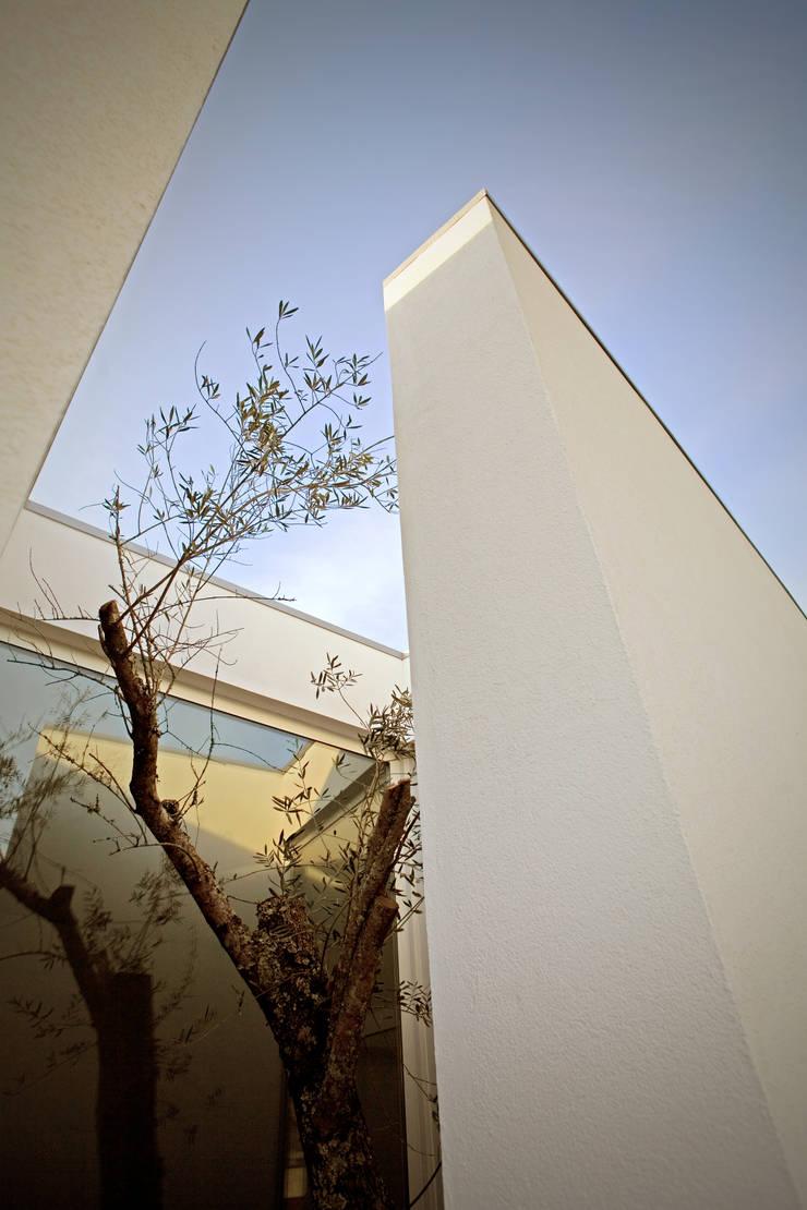 SG Light: Jardins  por GRAU.ZERO Arquitectura