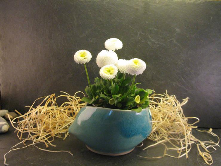 Зимние сады в . Автор – Bergdorf Keramik