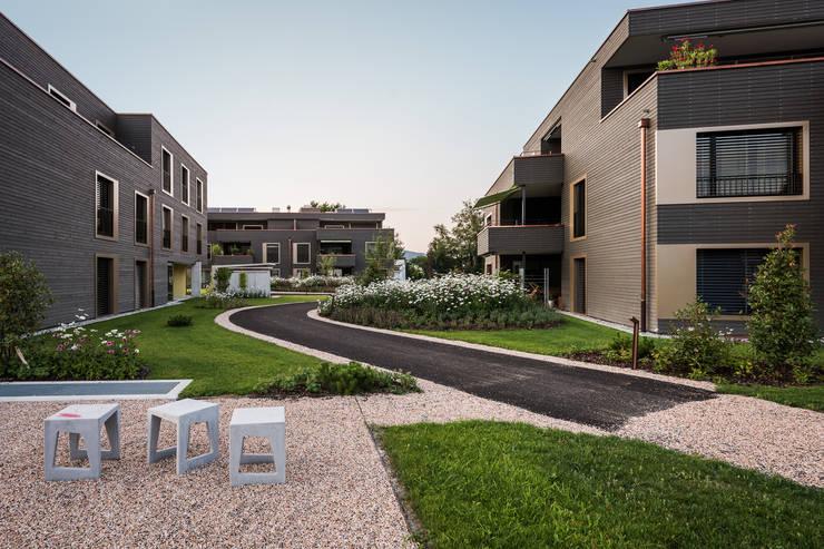 Zentraler Gartenhof:  Garten von Giesser Architektur + Planung,Modern Holz Holznachbildung
