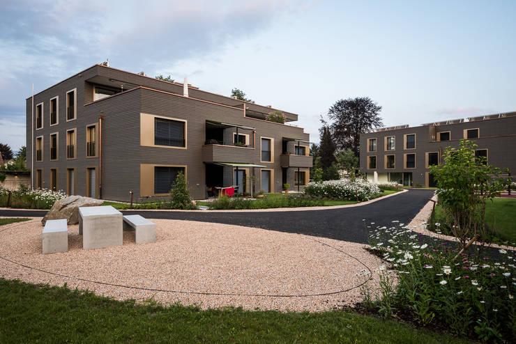 Westfassade:  Häuser von Giesser Architektur + Planung,Modern Holz Holznachbildung