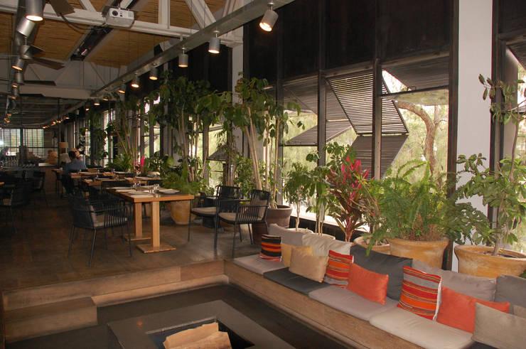 BAR TOMATE: Paisajismo de interiores de estilo  por Diseño Integral En Madera S.A de C.V.