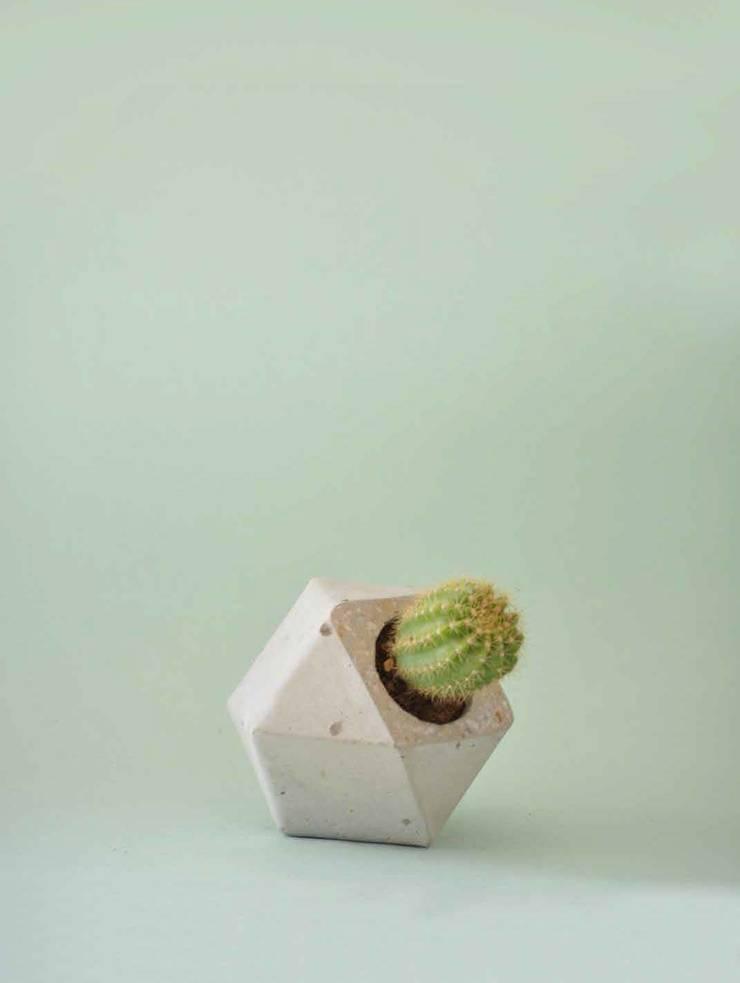 Cuboc: Hogar de estilo  por Edro, c.a
