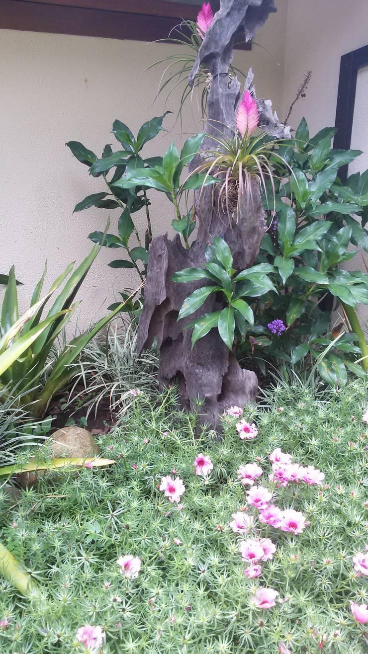 Projeto: Jardins  por caminhoa