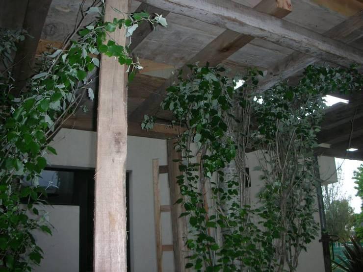 Obra en Saint Thomas: Terrazas de estilo  por lapassetarquitectos