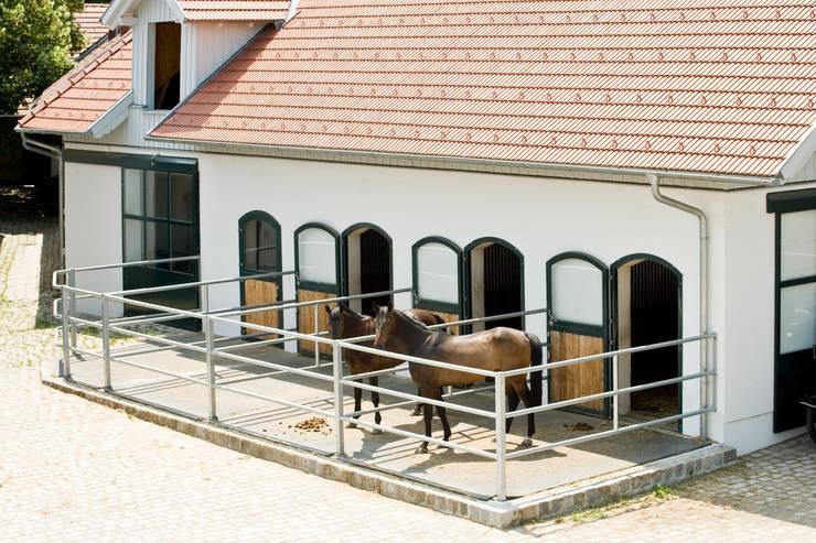 Einfamilienhaus in Laxenburg: mediterrane Garage & Schuppen von WUNSCHHAUS