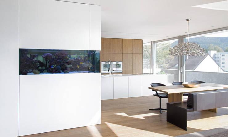 Haus am Hang: moderne Esszimmer von Diemer Architekten