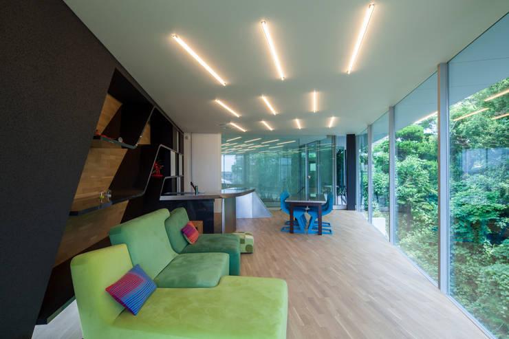 隣地の緑を借景とし目一杯取り込んだリビング: 田中一郎建築事務所が手掛けたリビングです。,