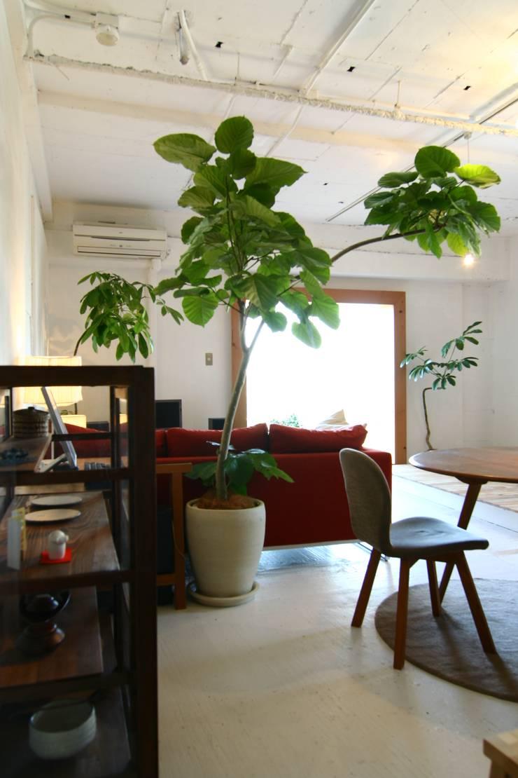 Apartment in Amizima: Mimasis Design/ミメイシス デザインが手掛けたリビングです。