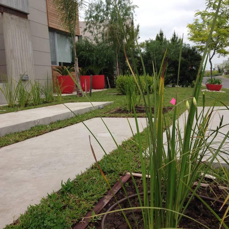 Jardins modernos por BAIRES GREEN