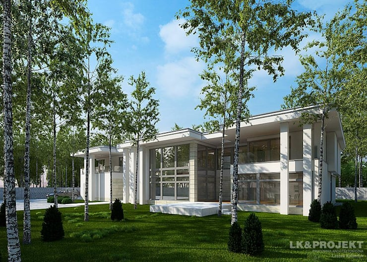 LK&1048 projekt domu jednorodzinnego : styl , w kategorii Domy zaprojektowany przez LK & Projekt Sp. z o.o.,