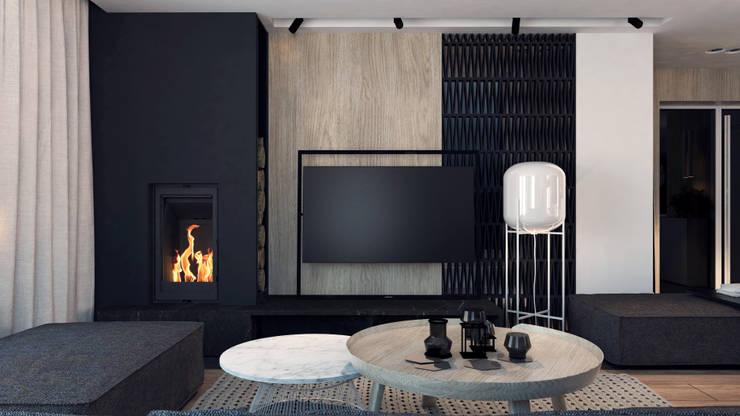 Moderne Wohnzimmer von A2.STUDIO PRACOWNIA ARCHITEKTURY Modern