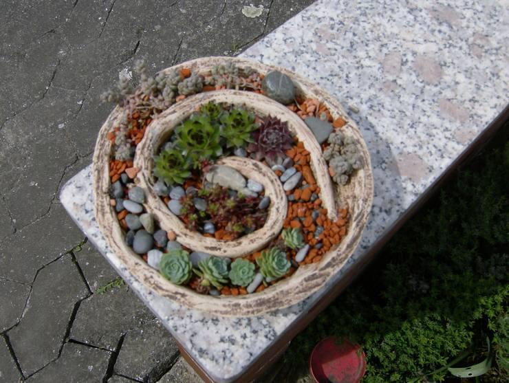 Projekty,  Ogród zaprojektowane przez rote_libelle