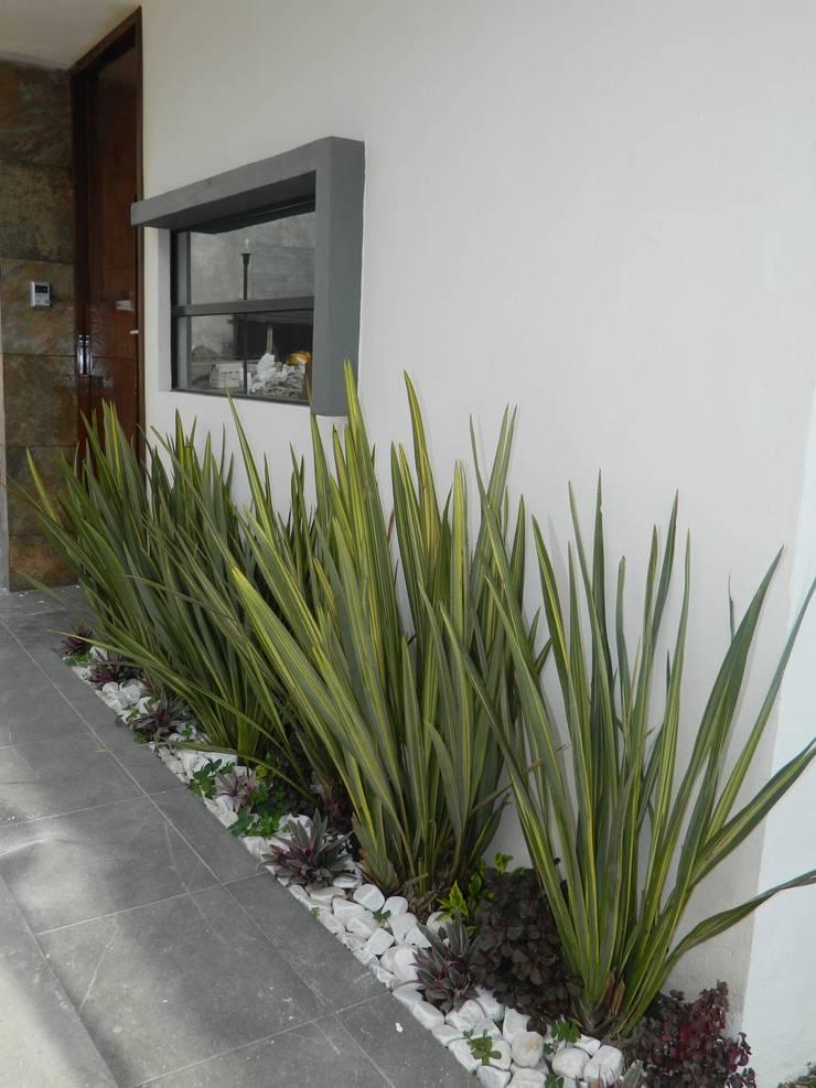 庭院 by ECNarquitectura,
