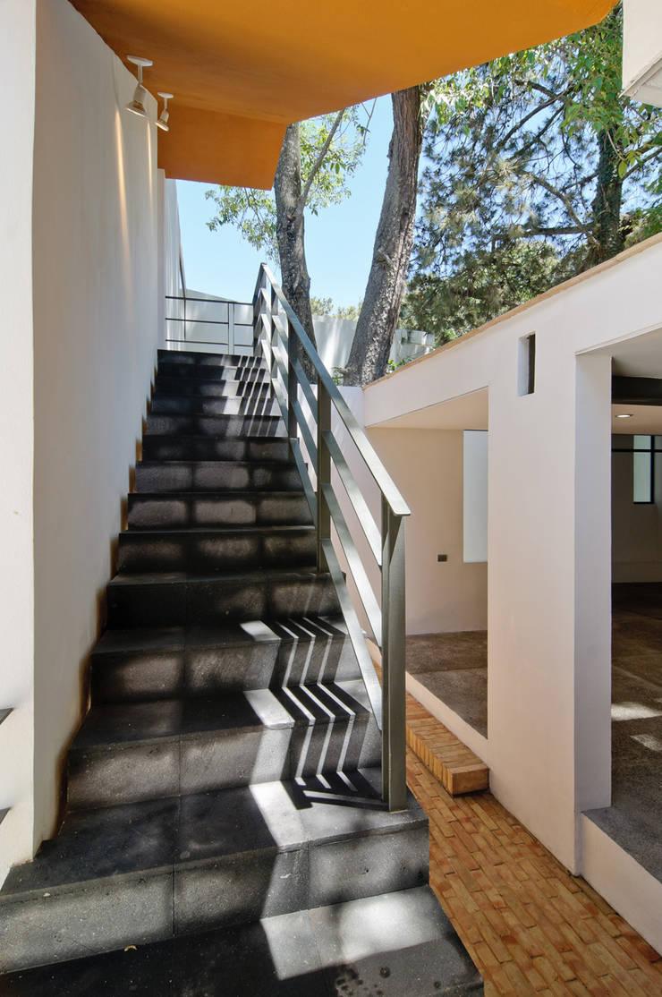 Casa La Lagartija: Pasillos y recibidores de estilo  por alexandro velázquez