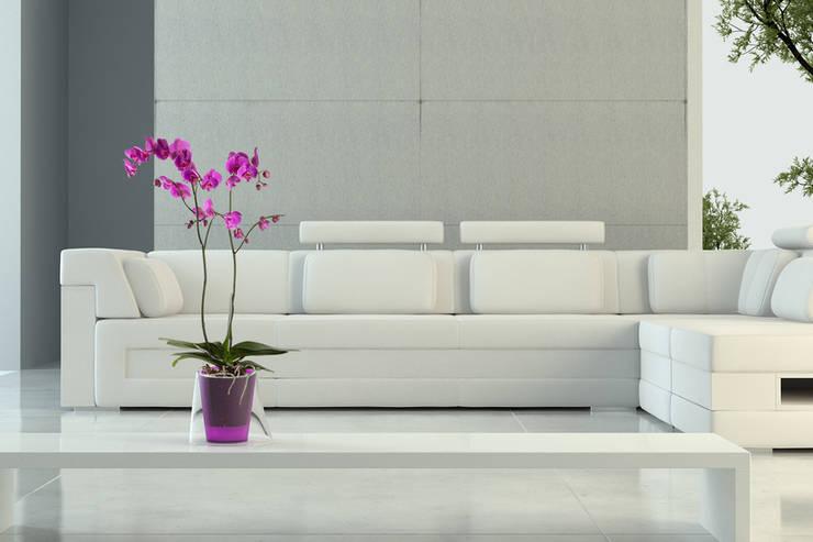LINA, Único y Fresco: Hogar de estilo  de Hobby Flower