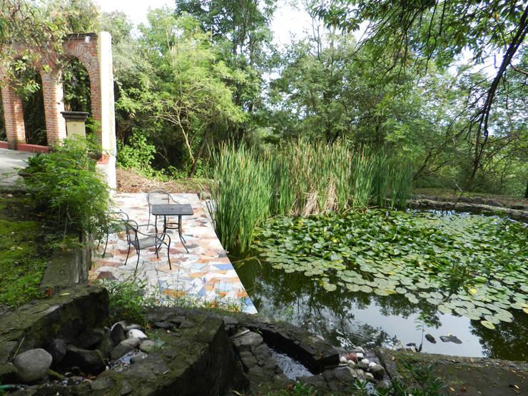 Jardín Nepantla:  de estilo  por Paisaje Radical