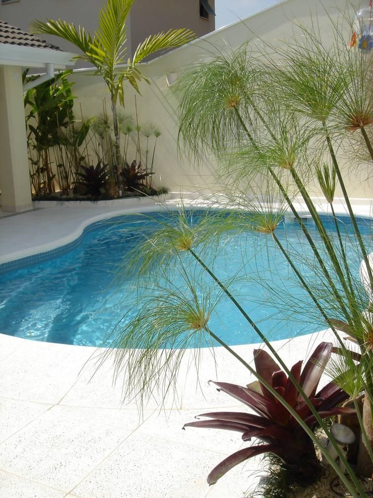 Piscine tropicale par REJANE HEIDEN PAISAGISMO Tropical