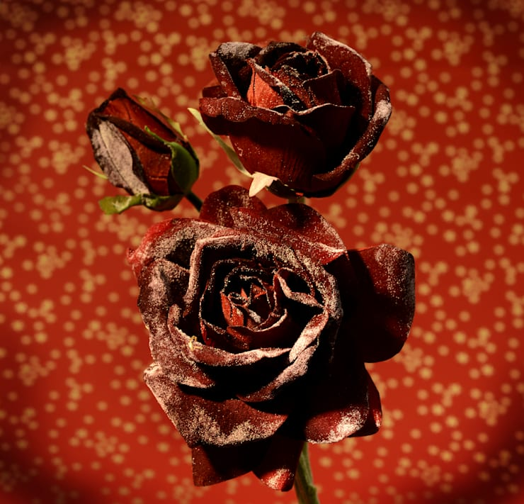 Red, Rouge, Rood, Rojo, Rosso, Rot, Rød, Vermello, 紅: modern  door Groothandel in decoratie en lifestyle artikelen, Modern Zijde Geel