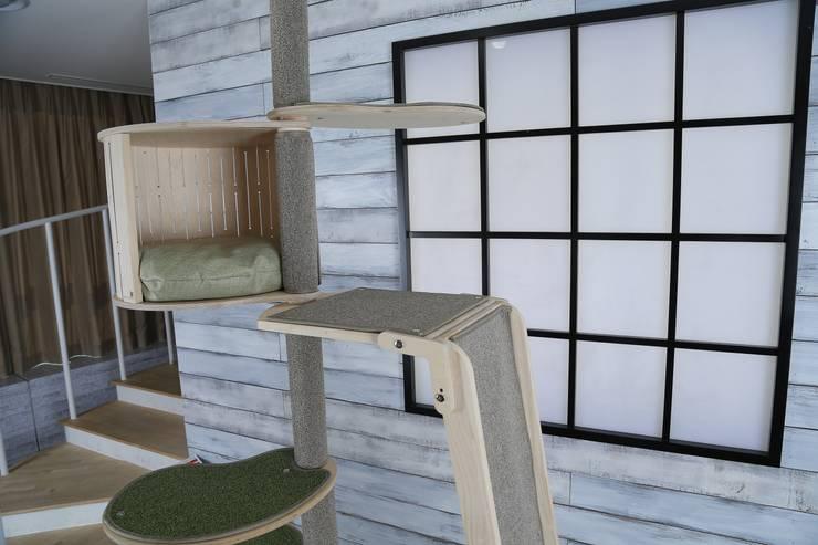 캣폴 전용 하우스: 가또블랑코의  가정 용품