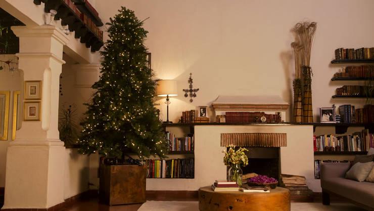 Colocando las luces al árbol de navidad. de MARIANGEL COGHLAN