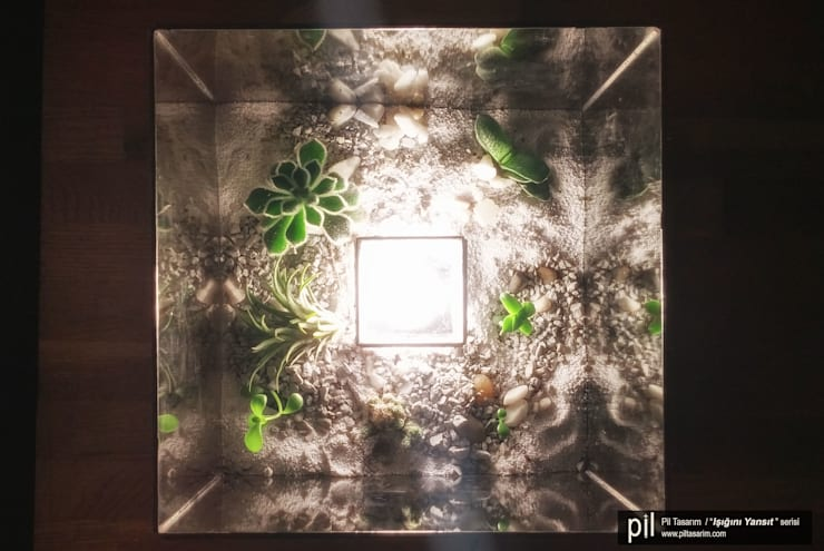 Pil Tasarım Mimarlik + Peyzaj Mimarligi + Ic Mimarlik – Teraryum Aydınlatma: modern tarz , Modern Cam