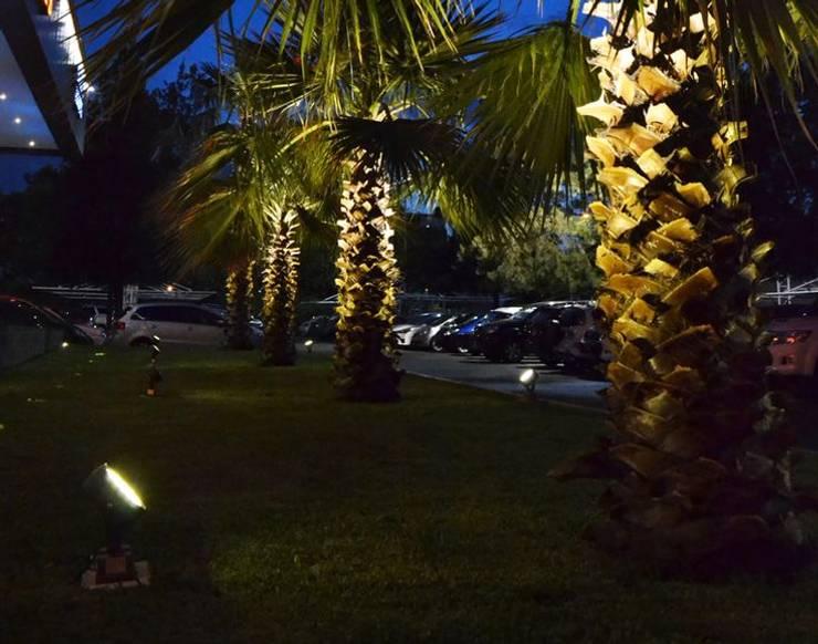 Proyector Led: Jardines de estilo  por Griscan diseño iluminación