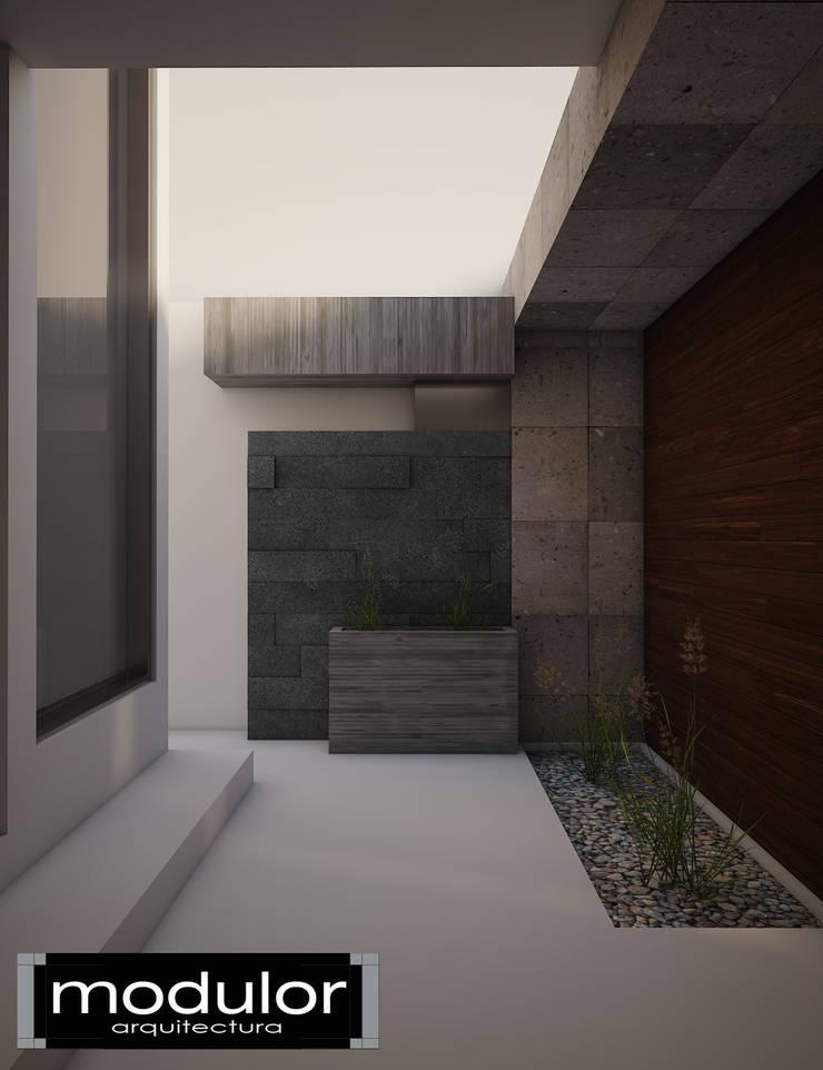 Fachada MG-Ceibas-87: Jardines de estilo  por Modulor Arquitectura