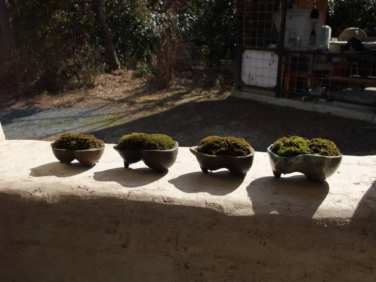 ひょうたん型苔鉢: 里窯【藤原 里子】が手掛けたインテリアランドスケープです。