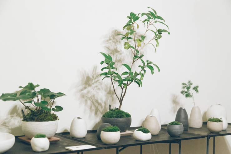 地器と金魚葉椿白侘助: 陶刻家 由上恒美                                          Ceramic Sculptor  tsunemi yukami  が手掛けたアートです。