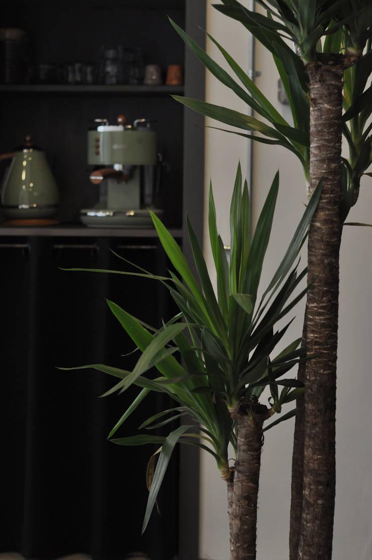 STUDIO 900 DESIGN – Details of our Studio in Balat Istanbul:  tarz Ofisler ve Mağazalar