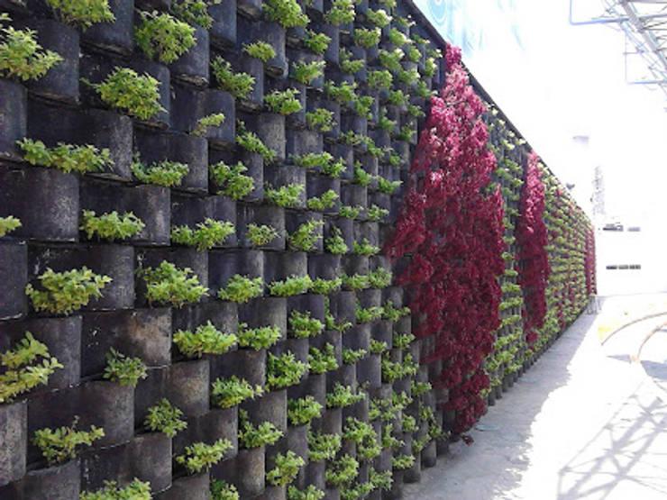 FLORESA BARDA DE PRESENTACION DE CFE: Jardines de estilo  por ENFOQUE CONSTRUCTIVO