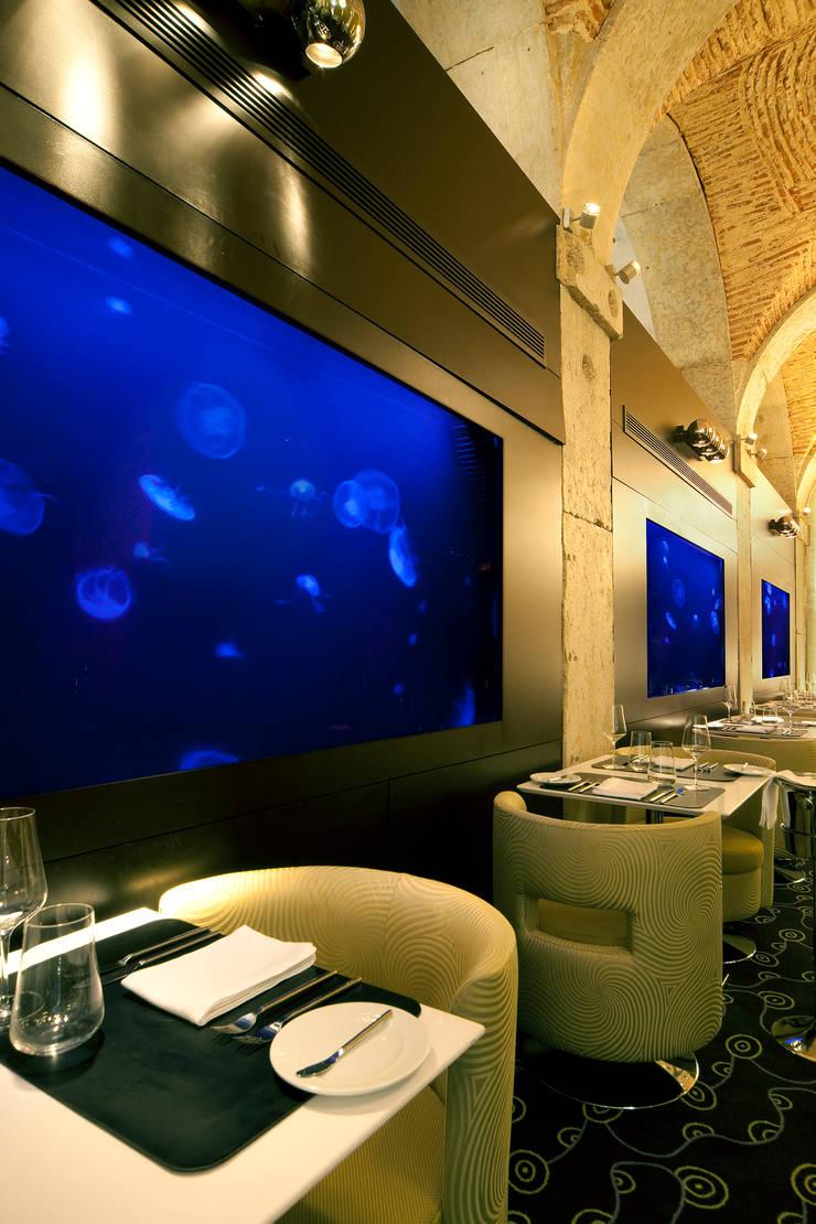 ADn jellyfish aquariums at Largo restaurant in Lisbon: Espaços de restauração  por ADn Aquarium Design