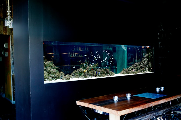 ADn saltwater aquarium at restaurant Lazuli - Estórias do Mar: Espaços de restauração  por ADn Aquarium Design