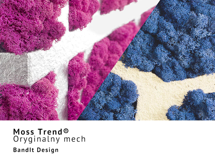 Naturalny mech na ściany marki Moss Trend® w kolorach Pantone 2016: styl , w kategorii Ściany zaprojektowany przez BandIt Design,Nowoczesny Płyta MDF