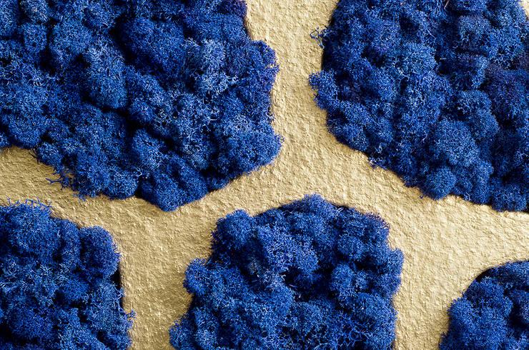 Naturalny mech na ściany marki Moss Trend® w kolorach Pantone 2016: styl , w kategorii Ściany zaprojektowany przez BandIt Design,Nowoczesny