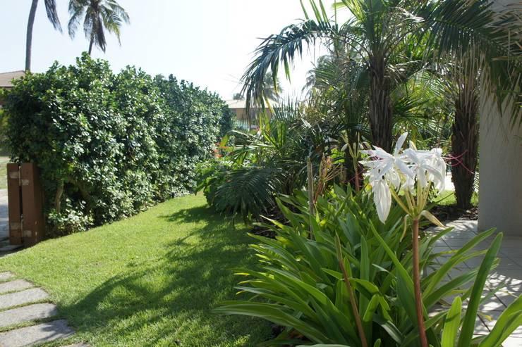 Tropical style garden by Proflora Tropical