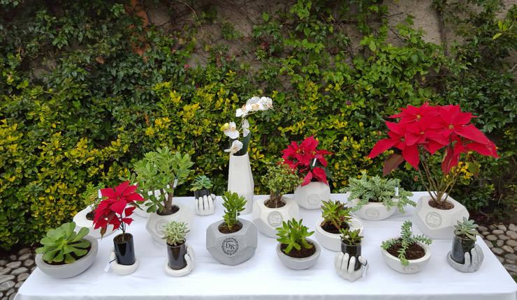 Dodeka Design:  Garden  by Dodeka