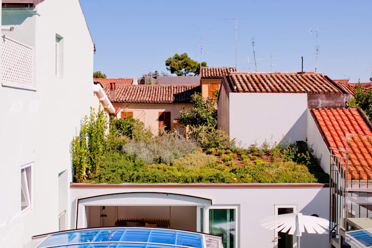 Tetto giardino: Giardino in stile  di Studio Olmeda Arch. Marco Amedeo
