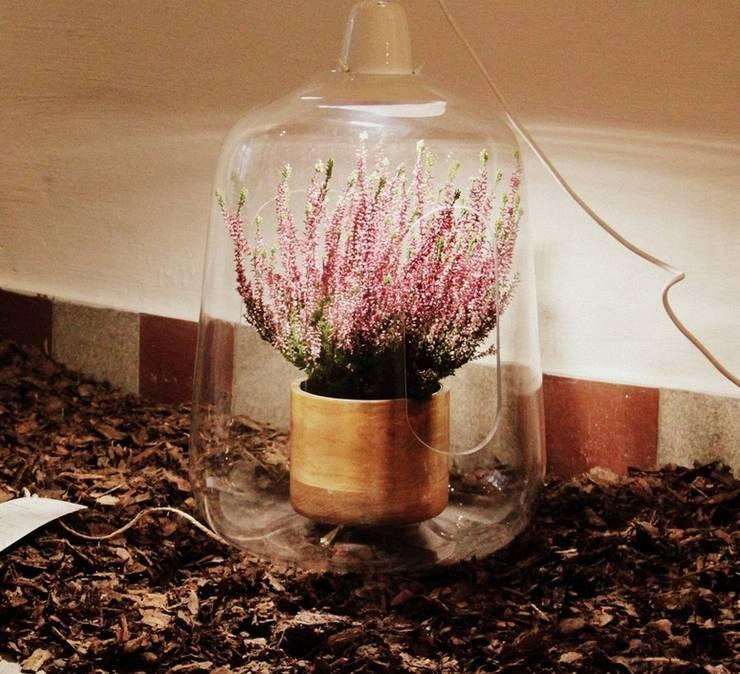 Suspension, Milo, Transparent, Blanc, H48CM   LED   Lightovo: Jardin De