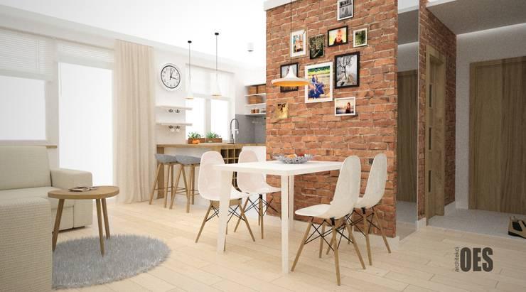 غرفة المعيشة تنفيذ OES architekci