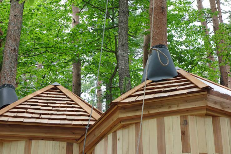室内を貫通する樹木: 株式会社エキップが手掛けた和室です。