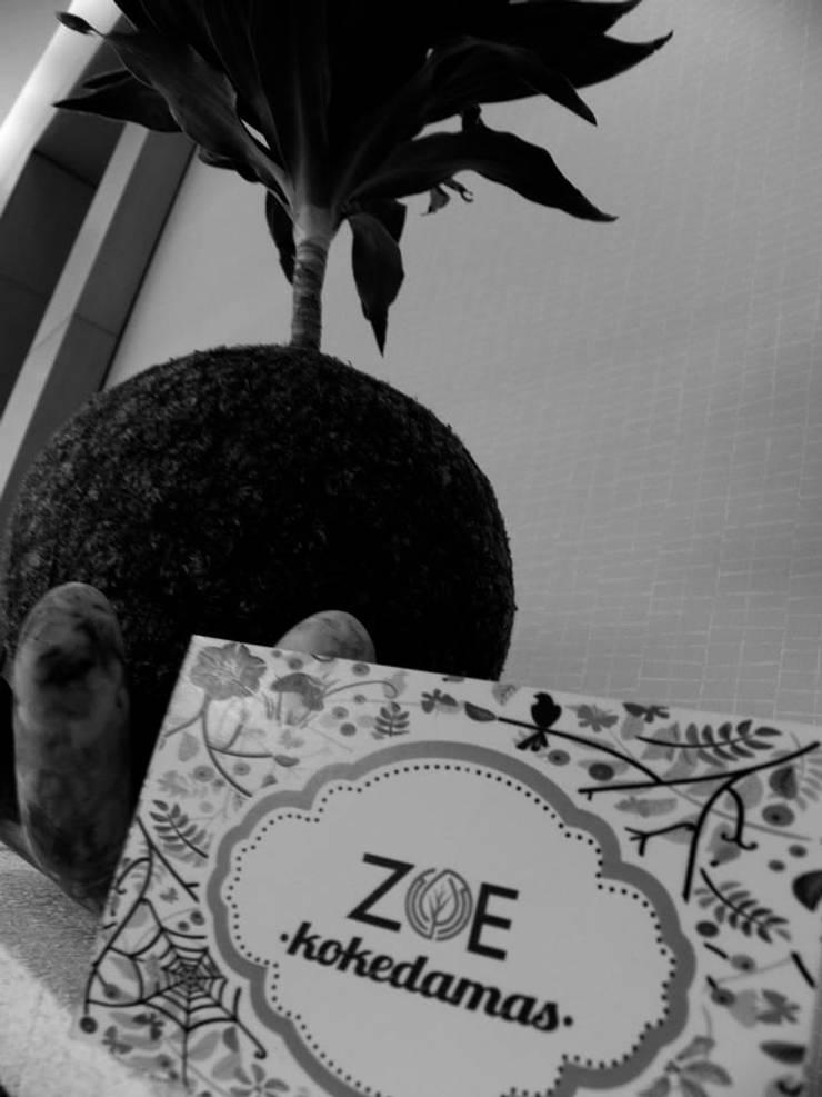 Kokedama Compacta: Paisajismo de interiores de estilo  por ZoeDecco,
