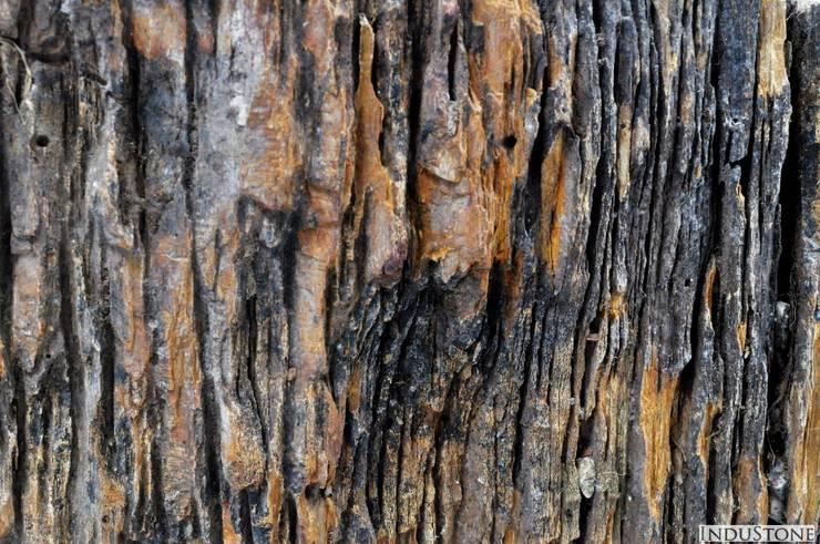Umywalki kamienne i mozaika Fossil Wood: styl , w kategorii  zaprojektowany przez Industone.pl,Rustykalny
