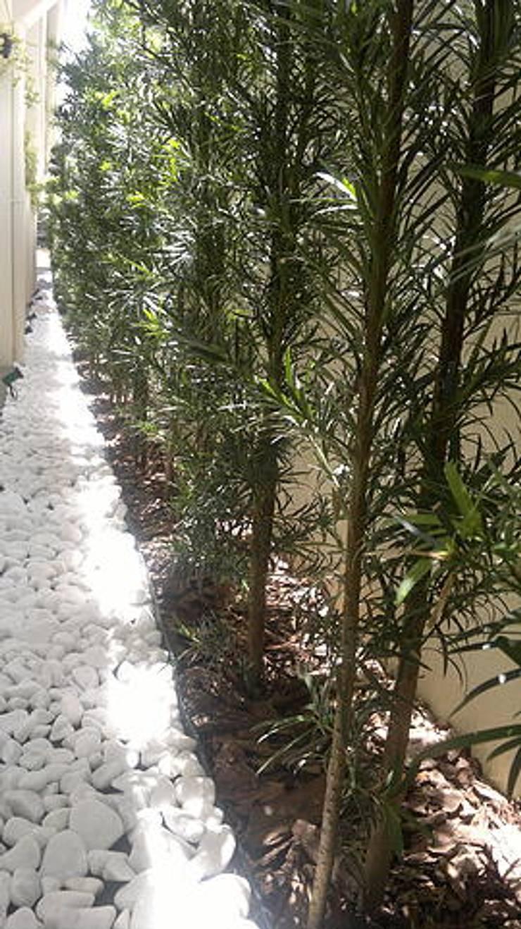 Canteiro lateral: Jardins  por Marcos Assmar Arquitetura | Paisagismo,Tropical