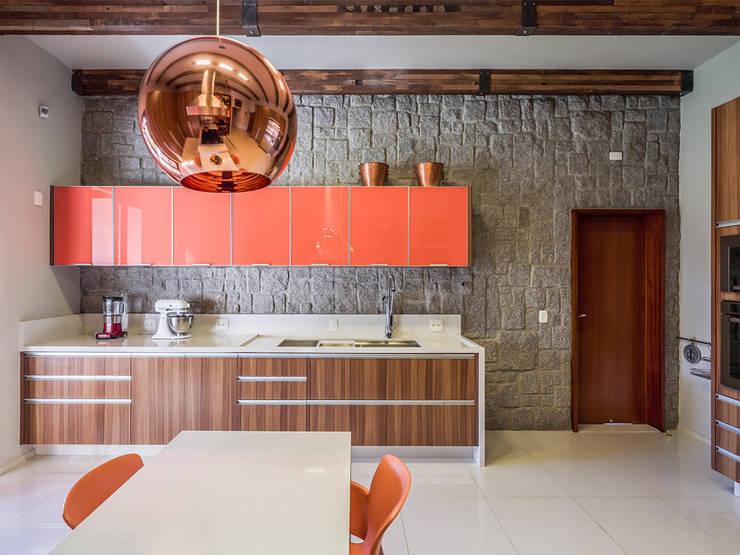 modern Kitchen by Antônio Ferreira Junior e Mário Celso Bernardes