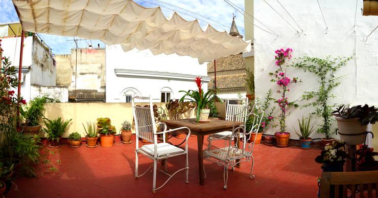 Terrazas: Jardines de estilo  de SEMBRADAS