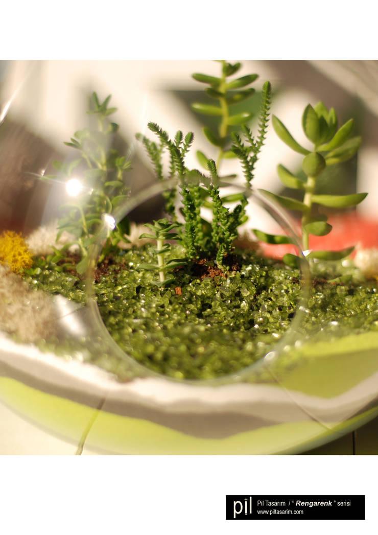 Pil Tasarım Mimarlik + Peyzaj Mimarligi + Ic Mimarlik – Teraryum: tropikal tarz tarz Banyo